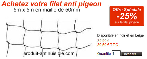 filet pigeon maille 50